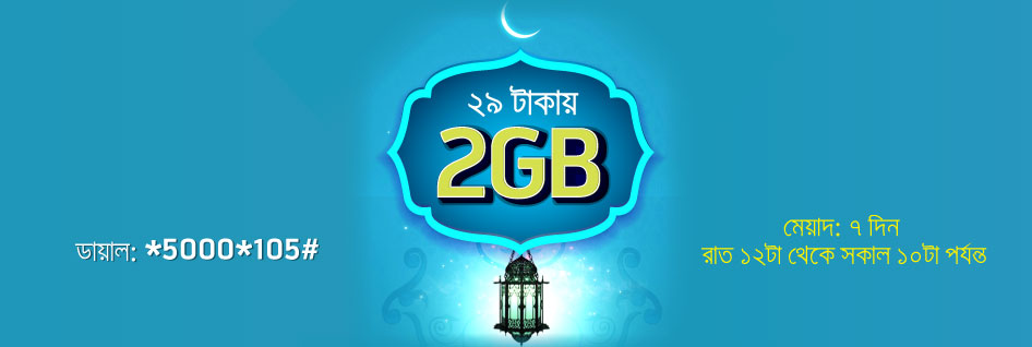 Grameenphone Night Pack 29tk 2gb
